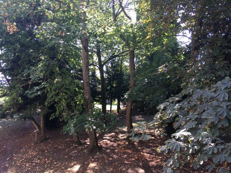 l'arboretum du parc
